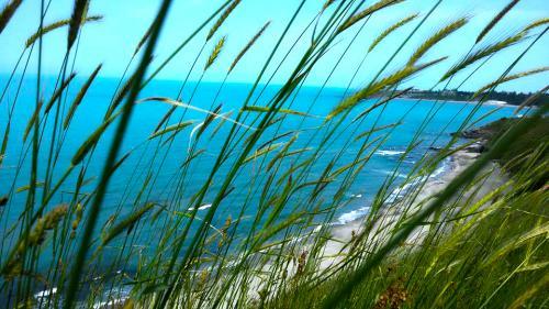 Плаж Делфин Ахтопол 2