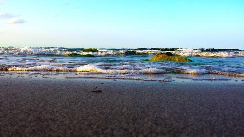 Плаж Делфин Ахтопол 01